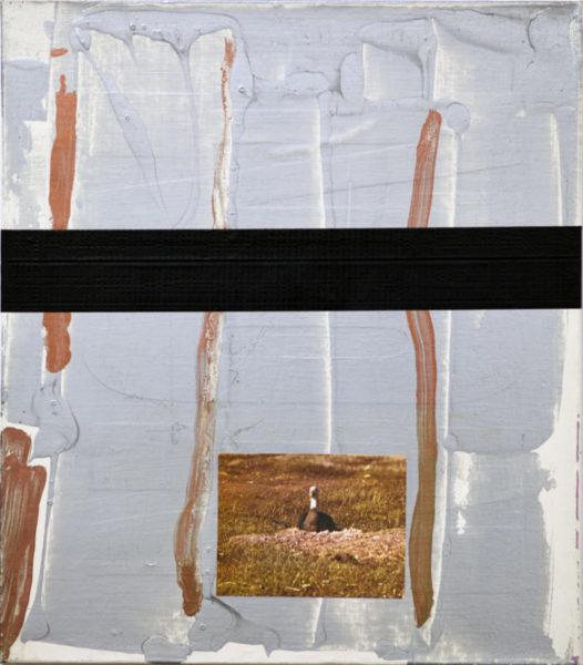 disney-animals-mixed-medias-on-canvas-36x44.5-2011-cr-jc-lett-rizzo-2012