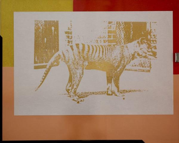 endangered-animals-tasmanian-wolf-41x25-cm-1996-2015-rizzo