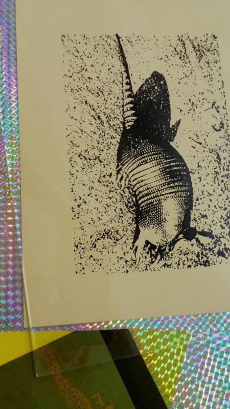endangered-animals-30x25-cm-1996-2015-rizzo