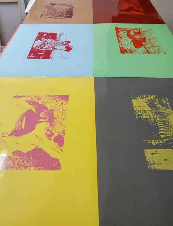 6-animaux-rares-serigraphies-veronique-rizzo