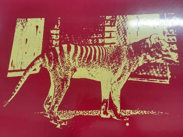 loup-de-tasmanie-rouge-veronique-rizzo-1996x2015